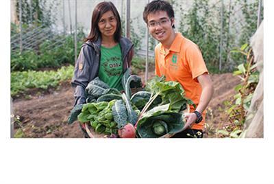 收割快樂 - 專訪新生農場現代農夫
