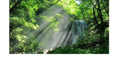 大自然給身心靈的禮物