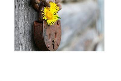 「人生勝利組」的枷鎖
